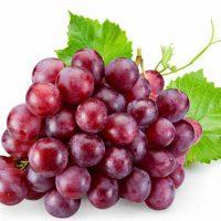 שמן זרעי ענבים