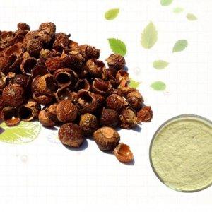 אבקת אגוזי סבון - Reetha