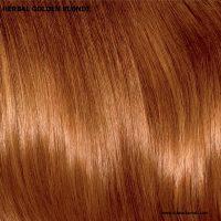 צבע לשיער חינה גולדן בלונד - Golden Blonde